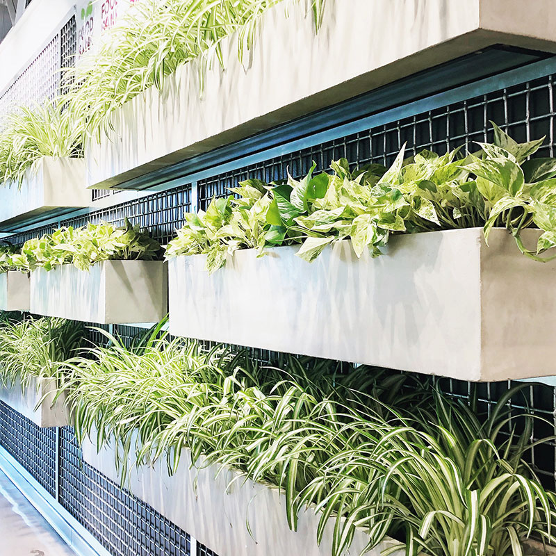 living wall containers